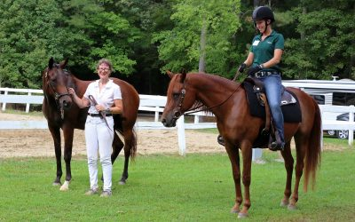 Announcing Our Summer Horse Show!